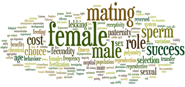 Current abstracts word cloud